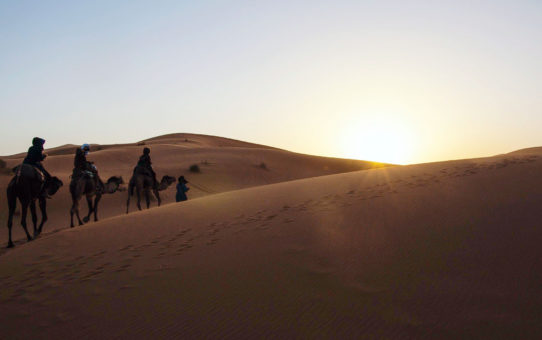 Fez Dades Marrakech 3 Days Tour