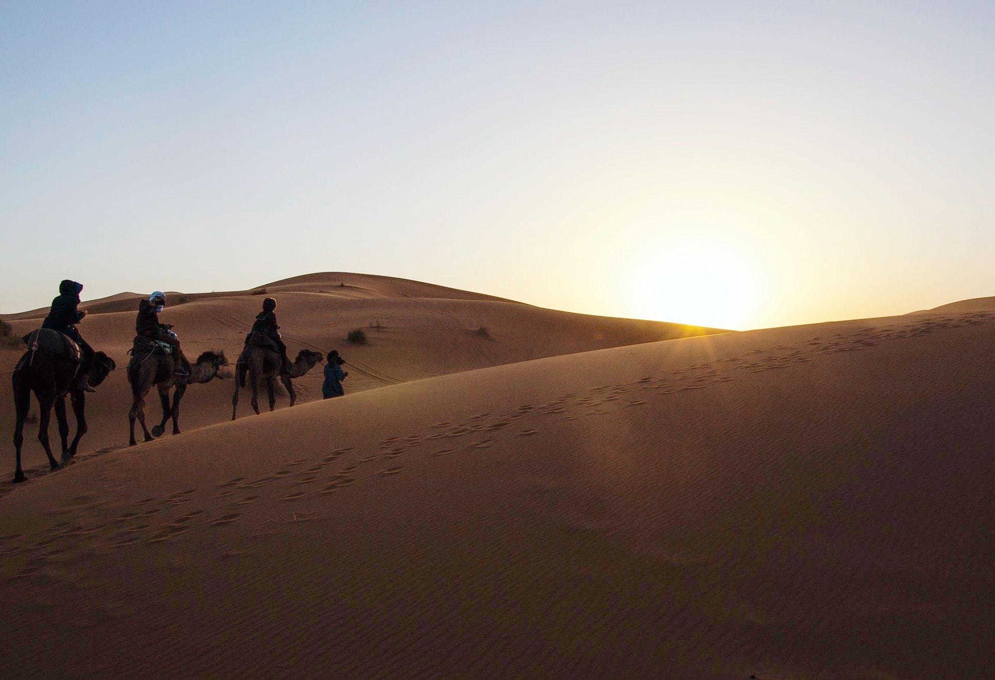 Fez Dades Marrakech 3 Days Tour